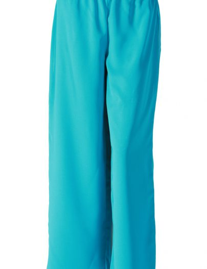 Turquoise Georgette Pants Turquoise